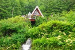 Wrangell,Alaska 99929,4 Bedrooms Bedrooms,2 BathroomsBathrooms,Single Family Home,1086